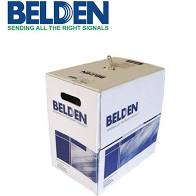 belden cat 6